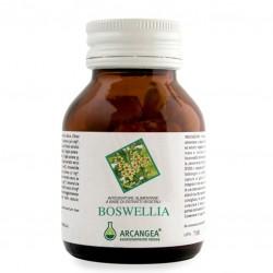 Arcangea Boswellia 60 Capsule