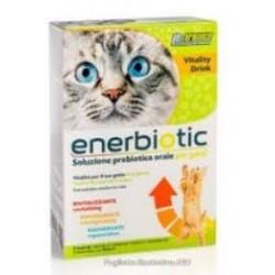 Petformance Enerbiotic Gatto