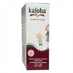 Schwabe Kaloba Soluzione Orale Gocce 100 ml 20 mg/7,5 ml per Raffreddore