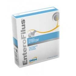 Drn Enterofilus 12x10 ml alimento complementare per cani e gatti