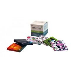Faenza All Media Save Your Mask Family Kit 600 Porta Mascherine 6 Pezzi