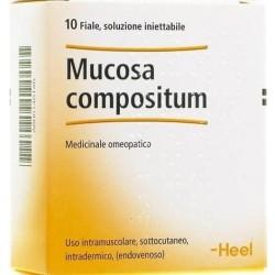 Heel Mucosa Compositum Medicinale omeopatico 10 Fiale x 2,2ml