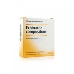 Guna Echinacea Compositum S Rimedio omeopatico 10 Fiale x 2,2 ml