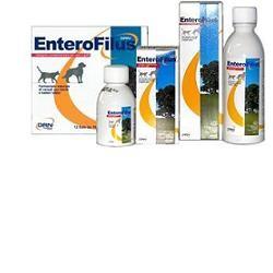 Drn Enterofilus Mang Sempl 250ml