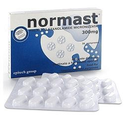 Epitech Group Normast 300 mg 30 Compresse