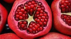 Stress ossidativo e invecchiamento cellulare: un aiuto dal melograno