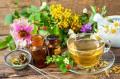 Le piante contro i sintomi della menopausa